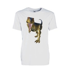 T-shirt Enfant motif Dinosaure